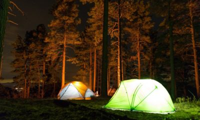 Your 101 Guide to Dispersed Camping